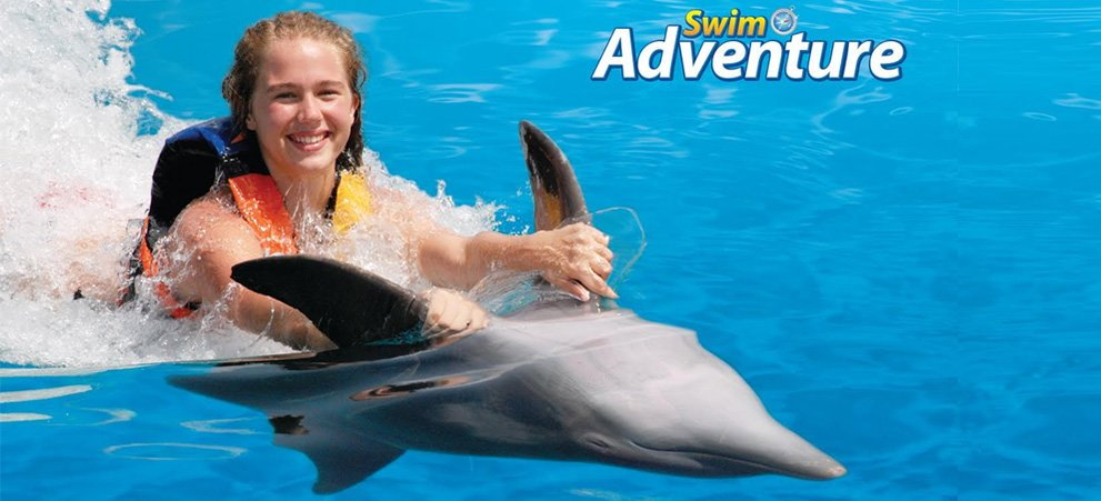 Swim with the Dolphins tour Punta Cana